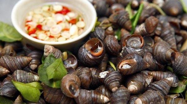 Có nên ăn ốc khi mang thai?