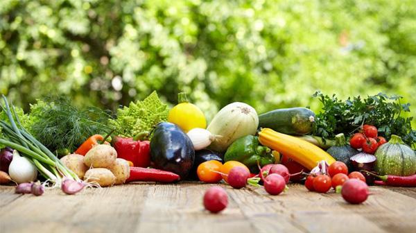 Thực phẩm biến đổi gen có an toàn với sức khỏe?